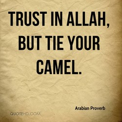 TRUST IN ALLAH, 