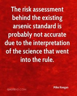 The risk assessment 