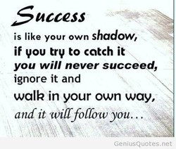 access is like your own shadow, if you try to catch it you will never succeed, ignore it and walk in your own way, and it will follow you.. GeniusQuotes.net
