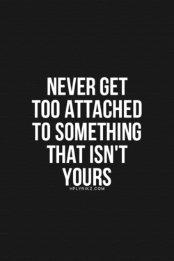 NEVER GET 