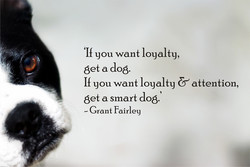 'Il you want loyalty, 