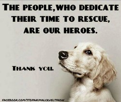 THE PEOPLE,WHO DEDICATE 