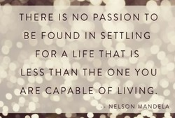 THERE IS NO PASSION TO 