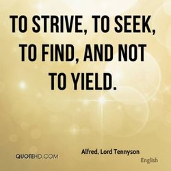 TO STRIVE, TO SEEK, 