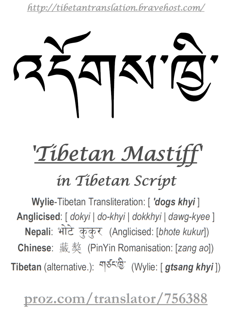 Quotes About Tibetan Buddhist 35 Quotes