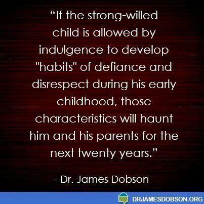 Quotes About Strong Willed Child 21 Quotes