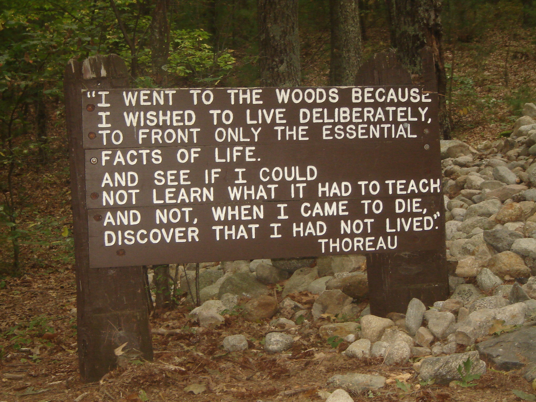 quotes about walden pond quotes