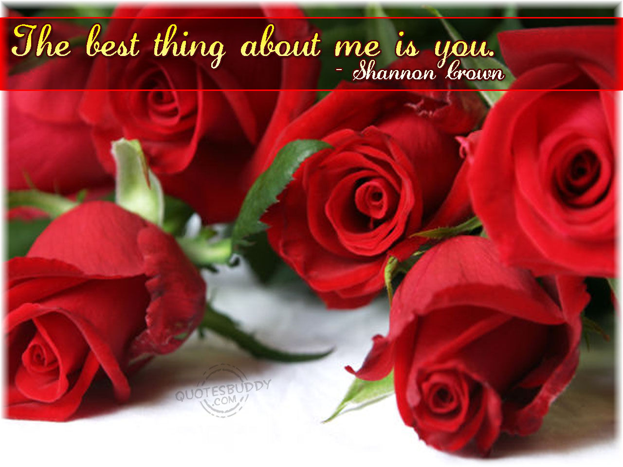 Quotes About Rose Flower 73 Quotes