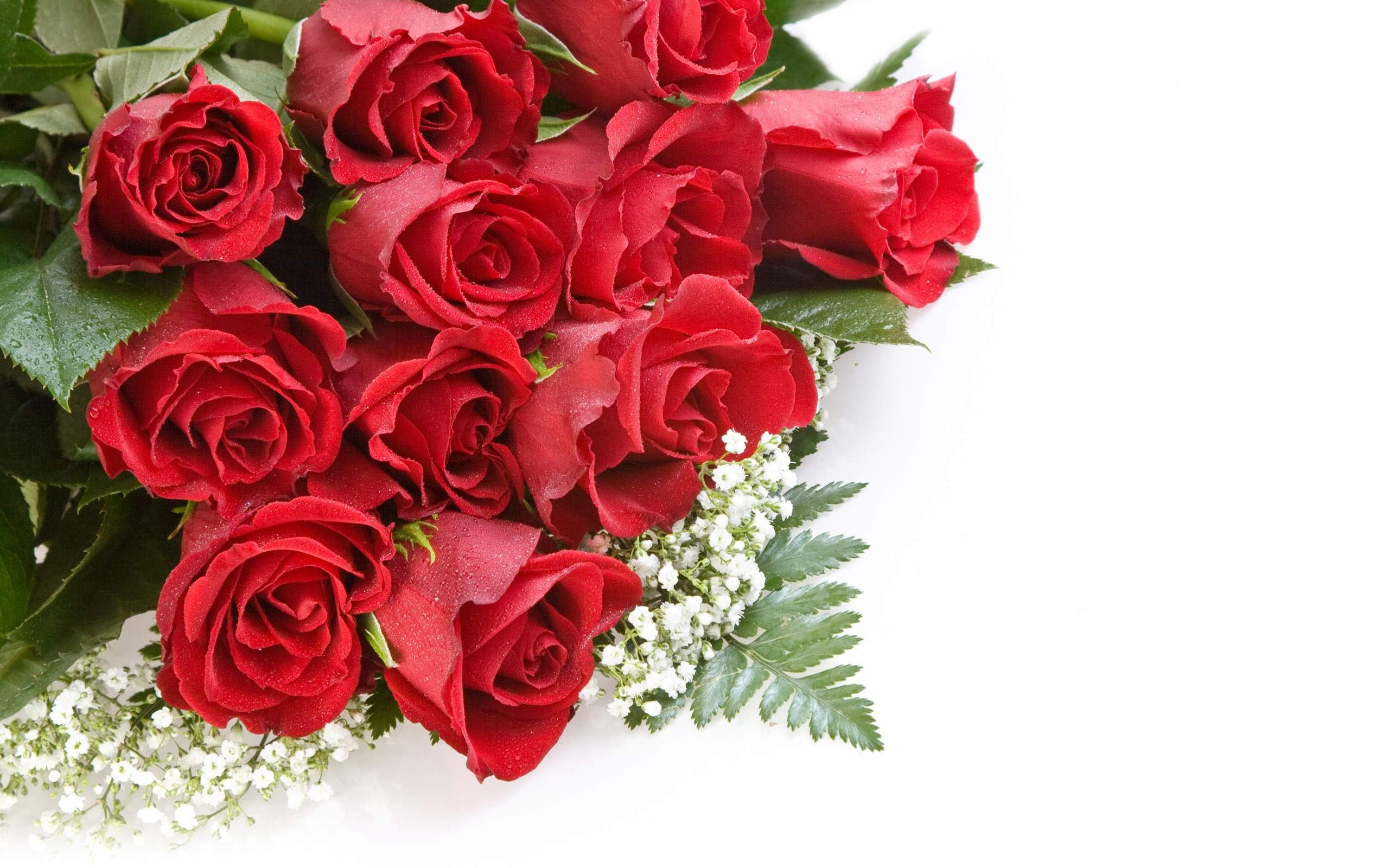 Quotes About Beautiful Roses 46 Quotes
