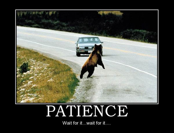 Quotes About Patience Funny 25 Quotes