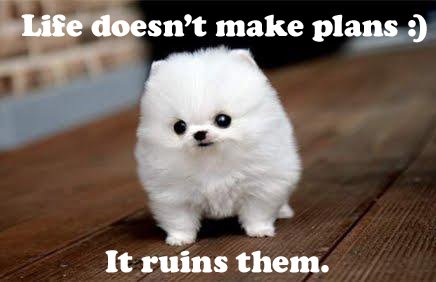 Quotes About Cute Dogs 26