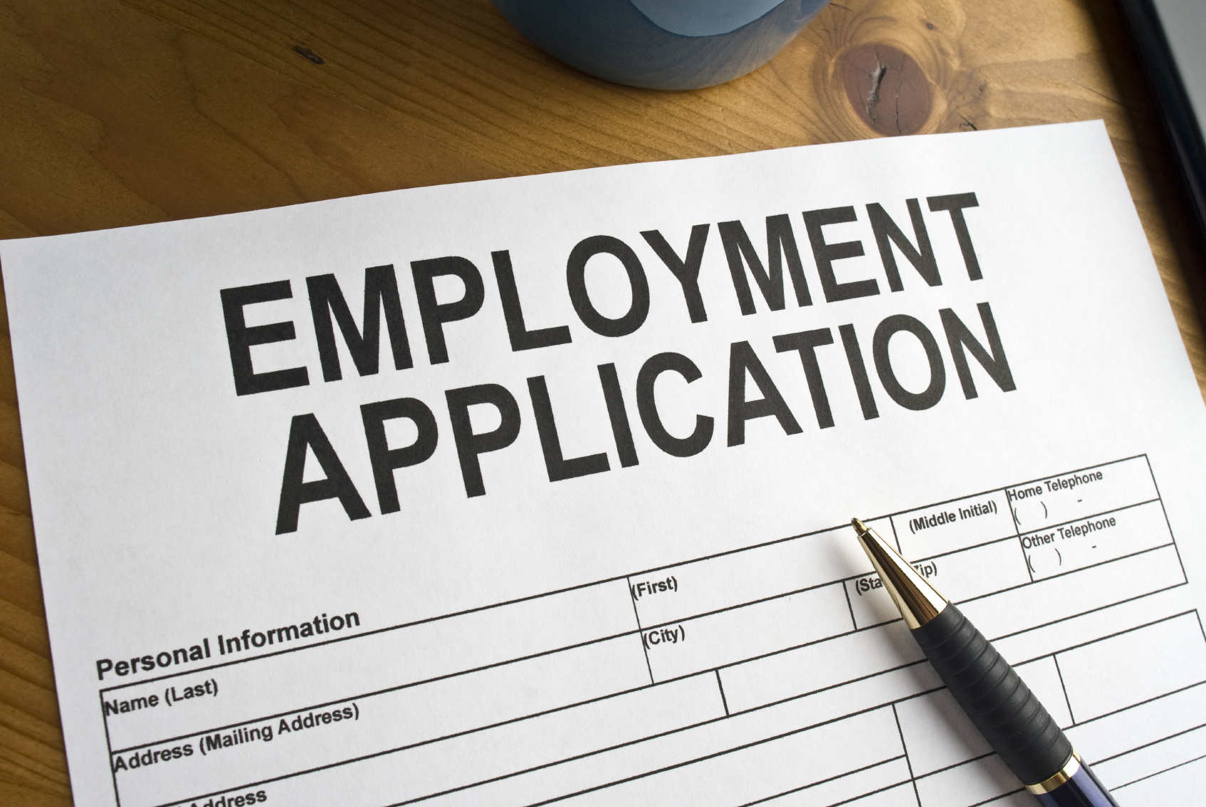 Employee Application Template%0A Work Objective Examples