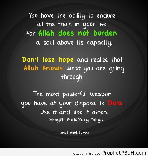 quotes about dont lose hope 37 quotes