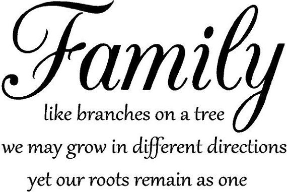 Quotes about Family name 82 quotes