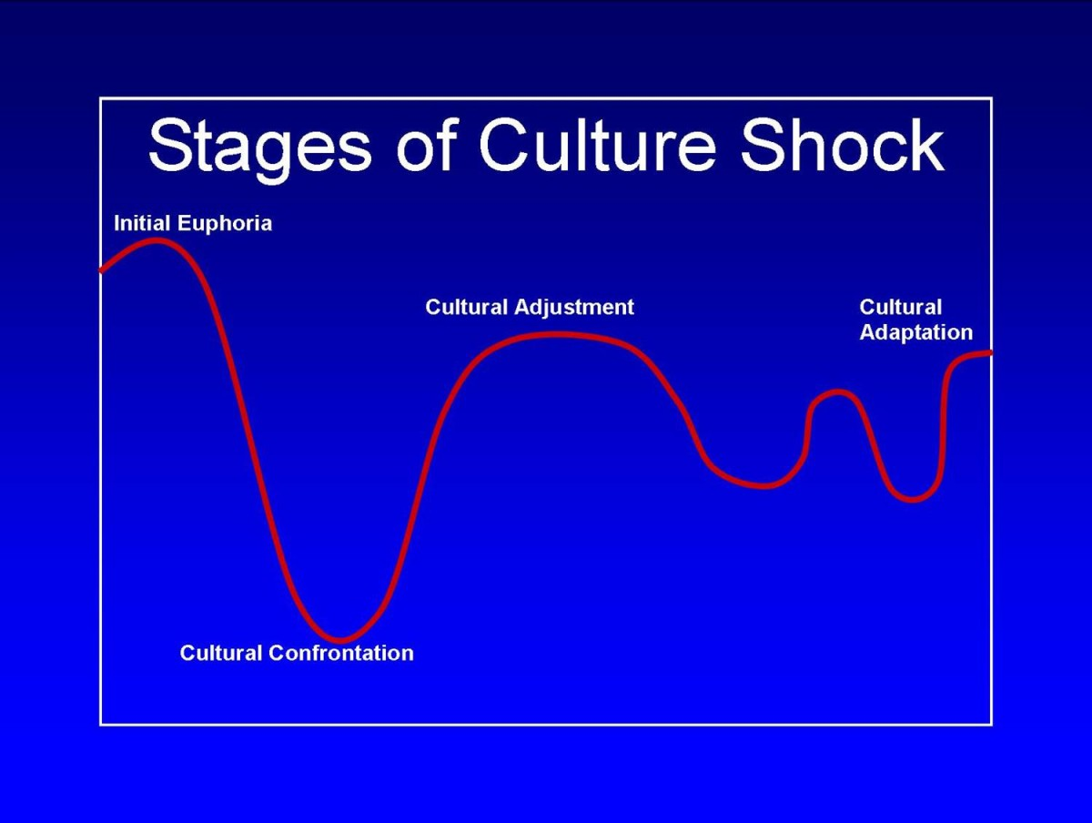 shocks essay Culture shock essays when i moved to another country, i felt depressed and tired experts explain that culture shock is just feelings belong to people who move to another country.