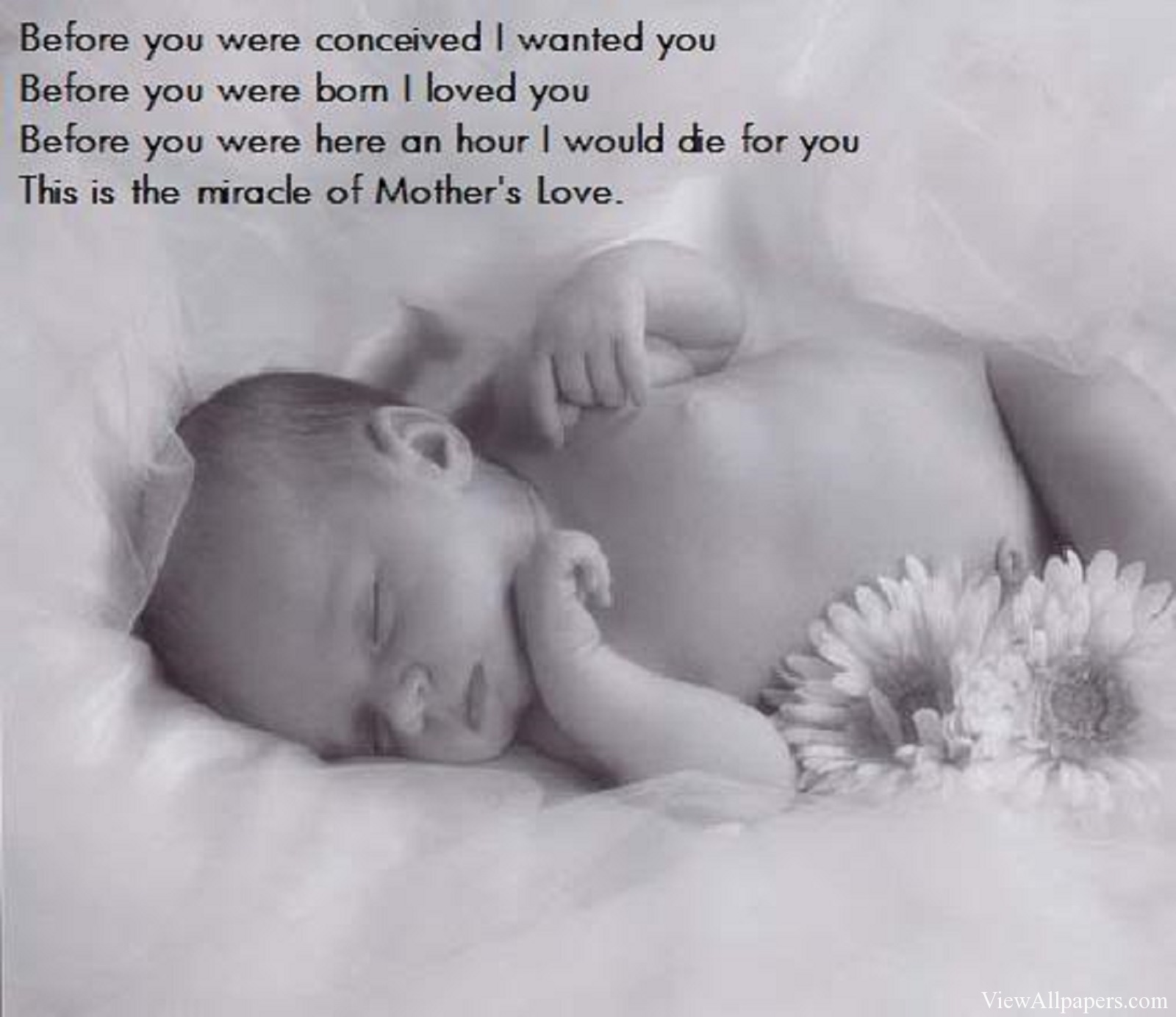 Quotes About Baby And Mother 85 Quotes