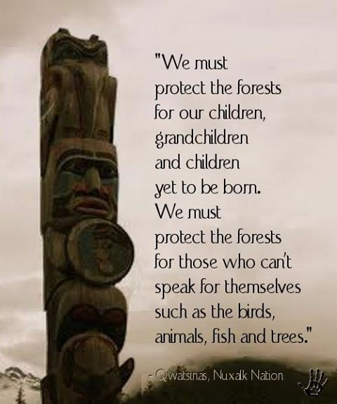 Quotes about Forest protection 23 quotes