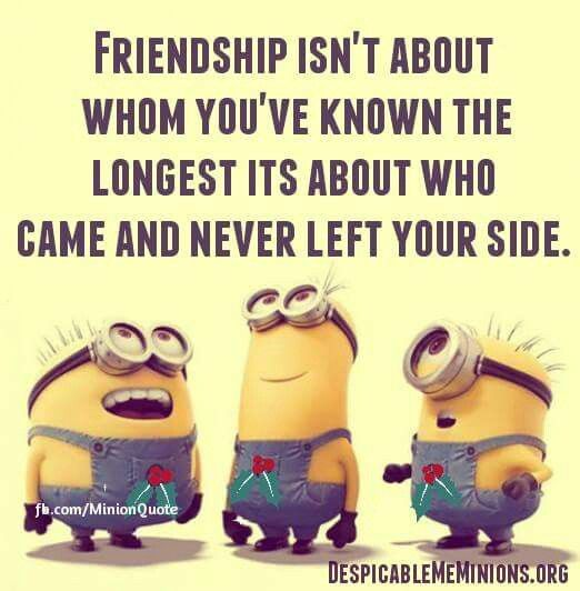 Quotes about Friendship jokes 26 quotes