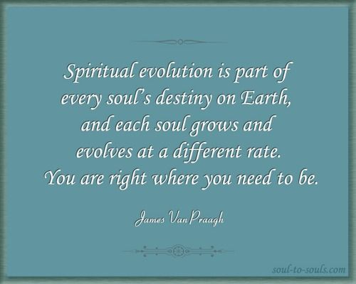 Quotes about Spiritual evolution 49 quotes