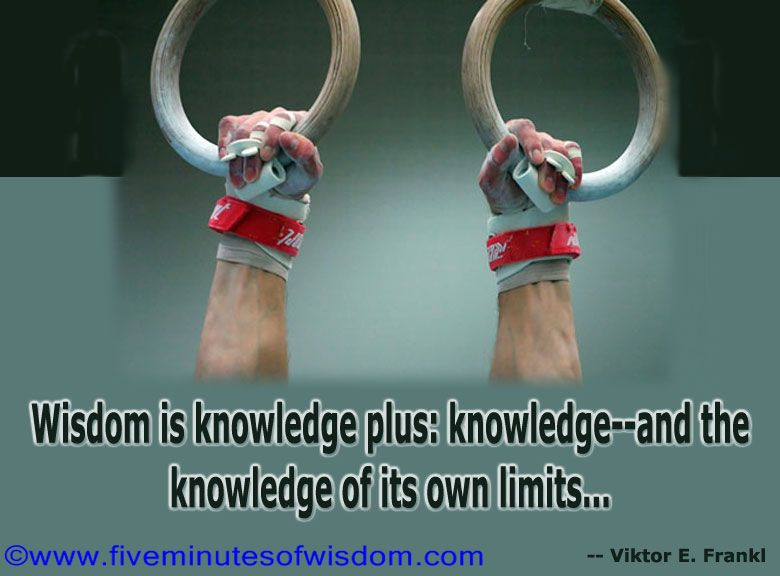 the meaning of knowledge and wisdom Wisdom - the trait of utilizing knowledge and experience with common sense and insight wiseness trait - a distinguishing feature of your personal nature judiciousness, sagaciousness, sagacity - the trait of forming opinions by distinguishing and evaluating.