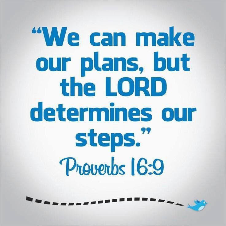 Quotes About Order My Steps 21 Quotes