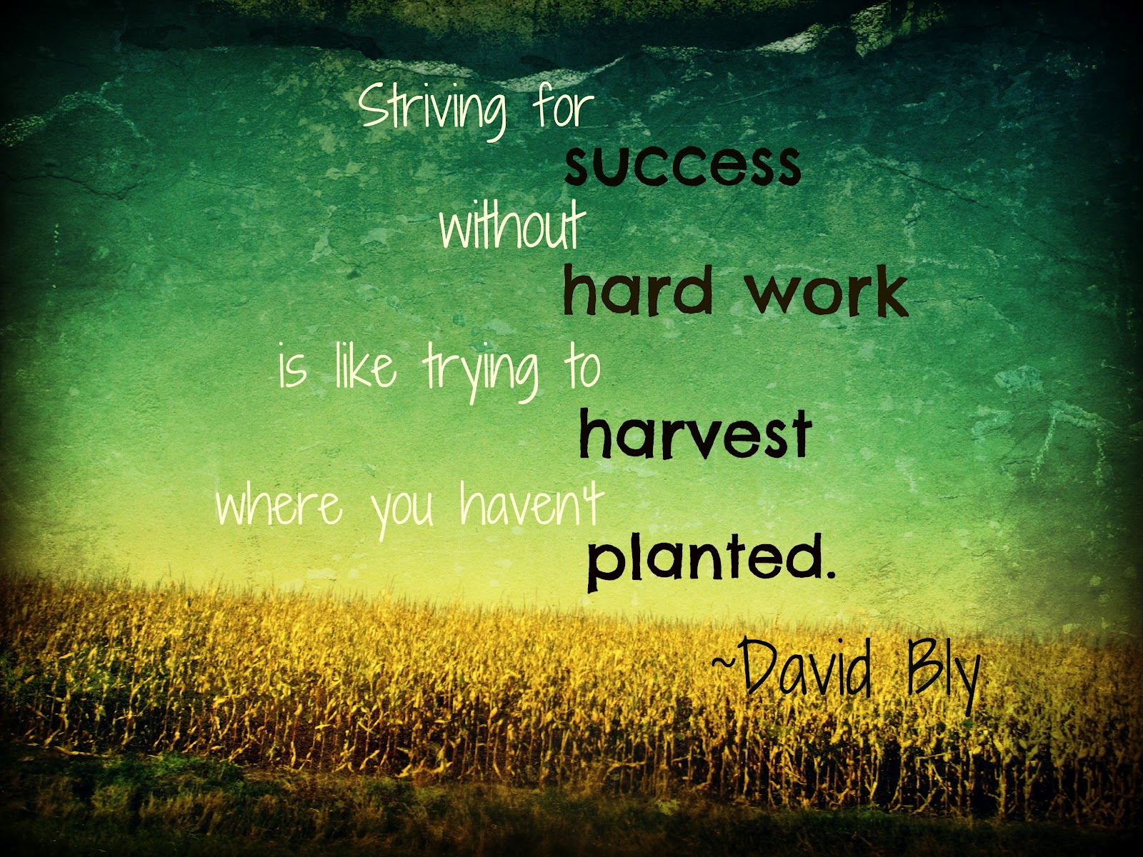 Quotes About Hard Journey 37 Quotes