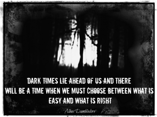 White Lies For Dark Times