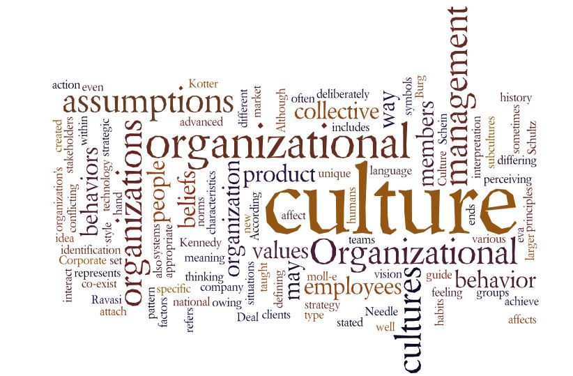 organizational culture of aep The control environment is the organizational structure and culture created by management and employees to sustain organizational support for an effective ic system when designing, evaluating, or modifying the organizational structure, management must clearly.