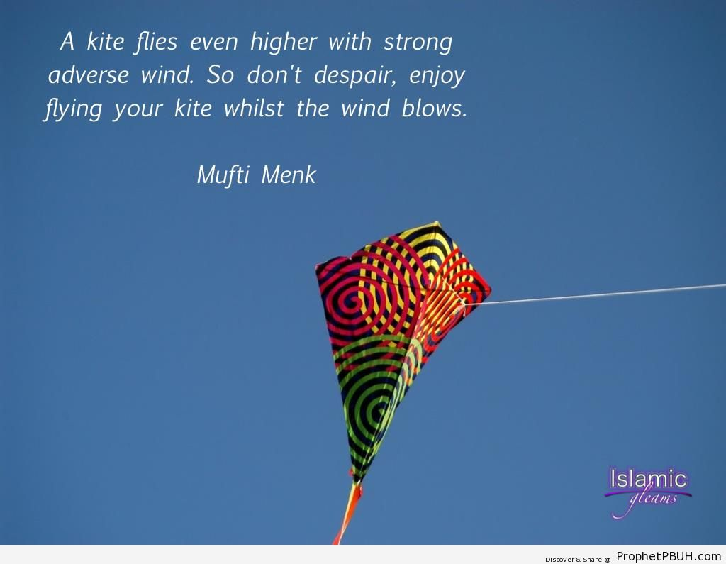 Quotes about Kites (3 quotes)