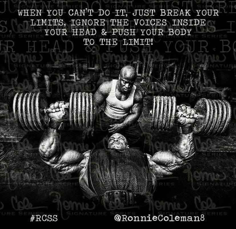 Quotes About Break The Limits 26 Quotes