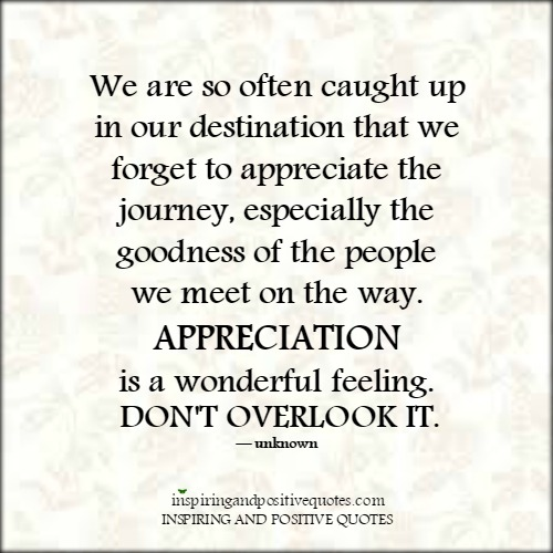 Quotes About Appreciating The Journey 60 Quotes Impressive Quotes About Appreciating Life