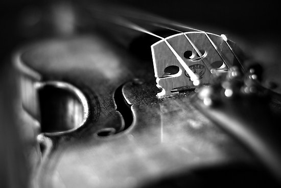 quotes about violin quotes