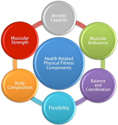 fitness components Essential components of a balanced fitness program  in order to implement a balanced fitness program, it's important to include all of the essential components of fitness when developing a fitness program, its good practice to incorp.