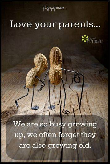 Quotes About Parents Growing Older 29 Quotes