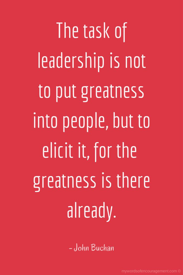 20+ Inspirational Quotes For Leaders At Work   Swan Quote