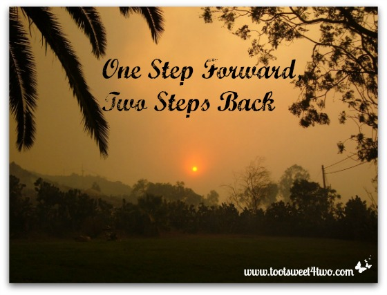 Quotes About Steps Forward 70 Quotes