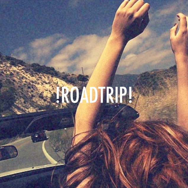Quotes About Friends And Road Trips 17 Quotes