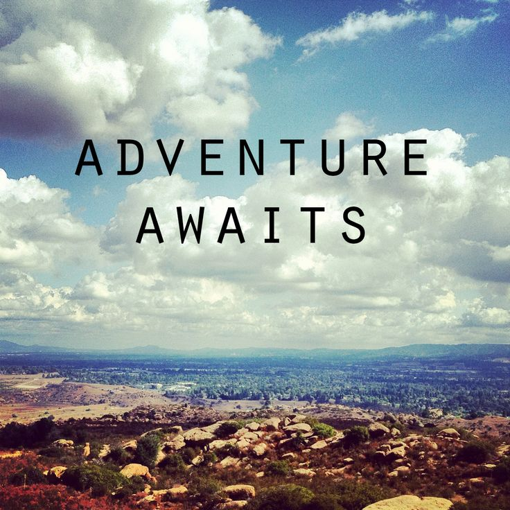 Quotes about Travel or adventure (28 quotes)