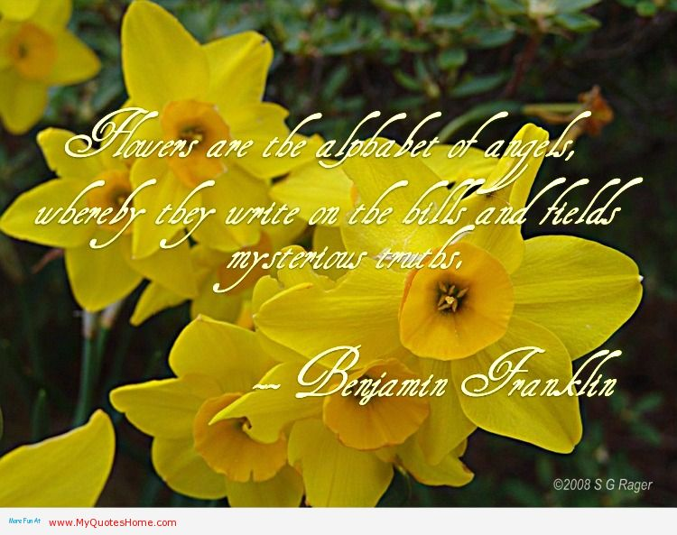 Quotes about flowering 115 quotes mightylinksfo