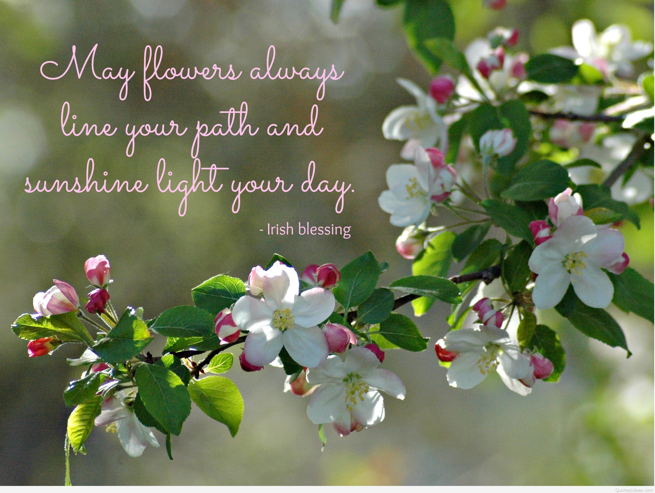 Quotes About May Flowers (52 Quotes