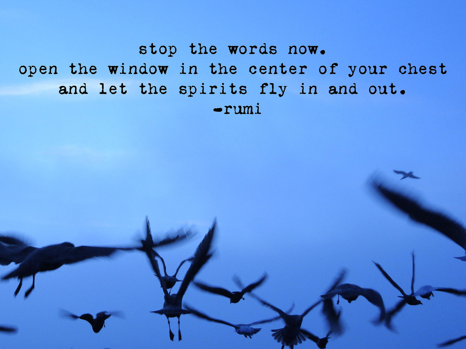 Quotes About Flying Like A Bird 27 Quotes