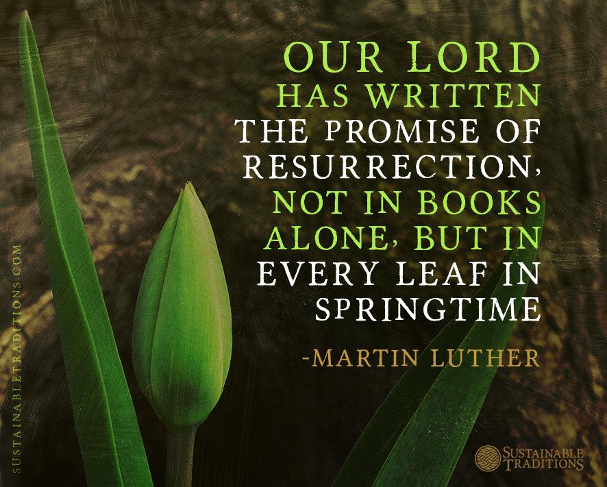 Image result for spring resurrection