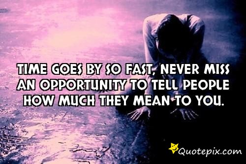 Quotes About Time Goes Fast (45 Quotes