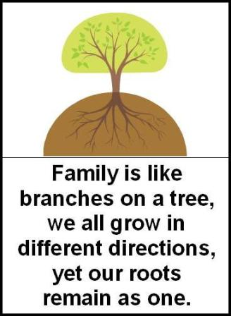 quotes about family brother quotes