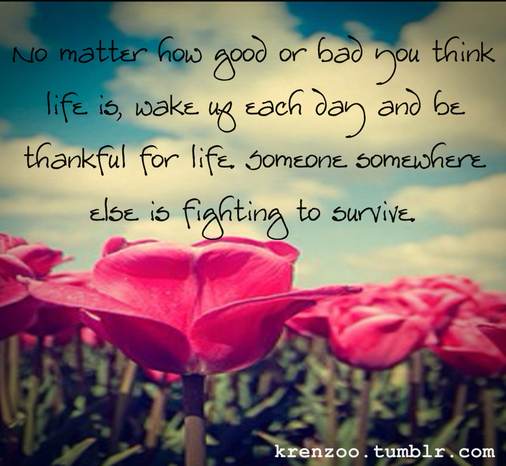 Quotes About Beauty In Life 404 Quotes