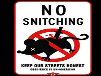 Quotes about Snitch (52 quotes)