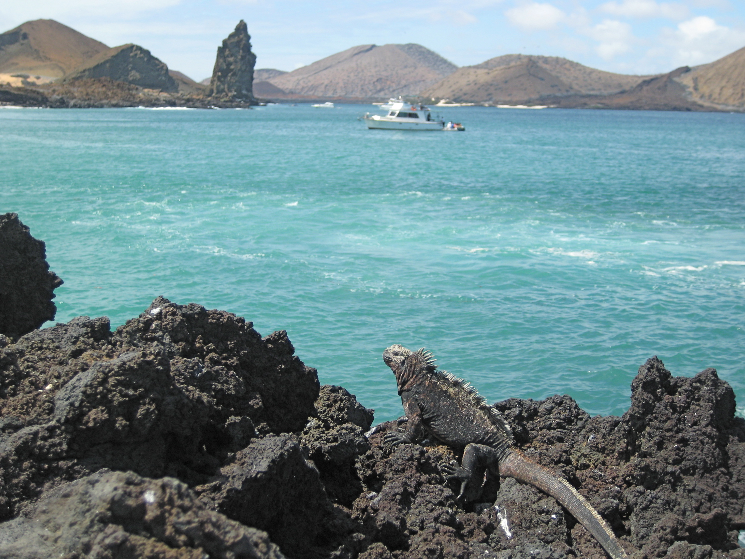 Quotes about Galapagos Islands (53 quotes)