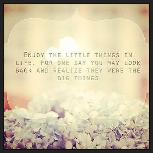 Quotes About Cherishing Every Moment 21 Quotes