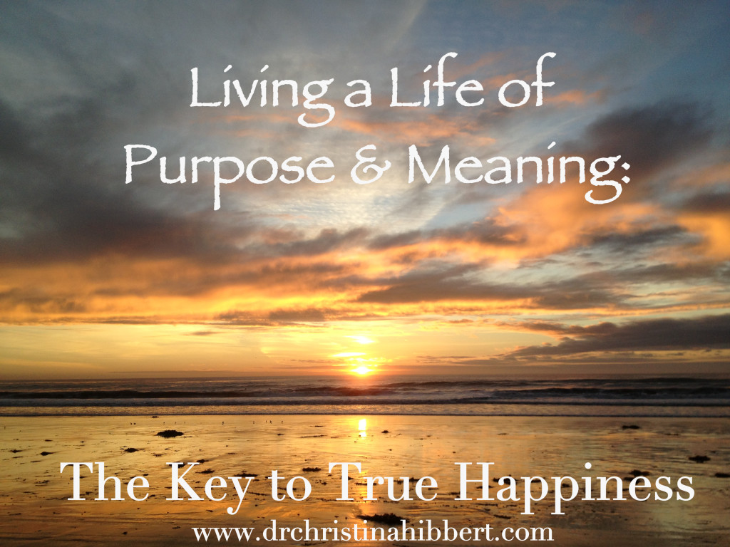 happiness essays meaning life Happiness, a definition essay (2004  this world calls for a little humility and that among these are life, liberty and the pursuit of happiness.