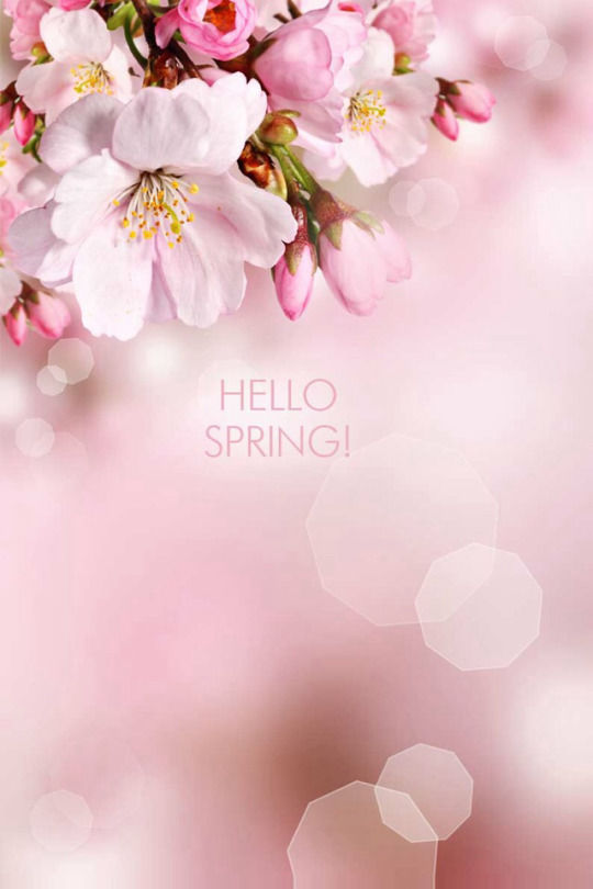 Quotes about spring flowers 110 quotes hello springi mightylinksfo